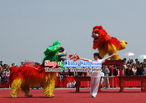 Chinese northern lion dance