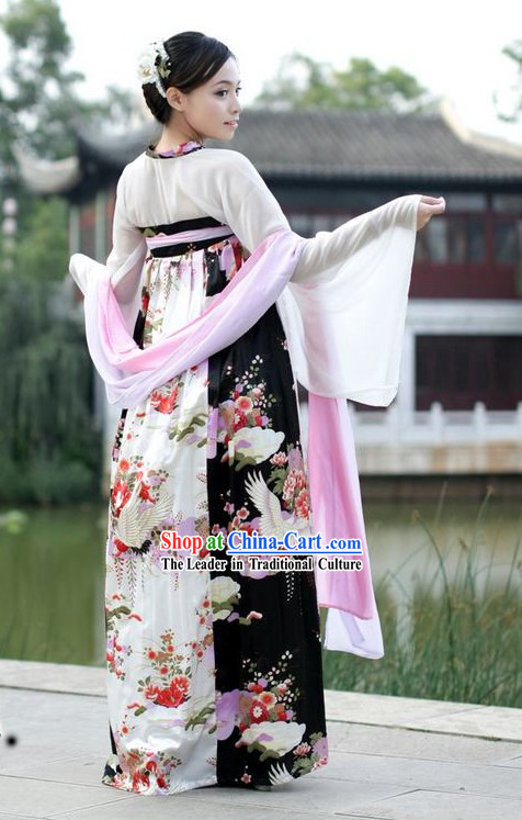 Ancient Chinese Crane Beauty Costume