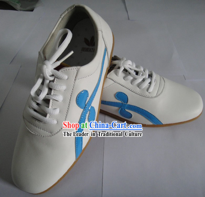 Traditional Chinese Tai Chi Kung Fu Shoes