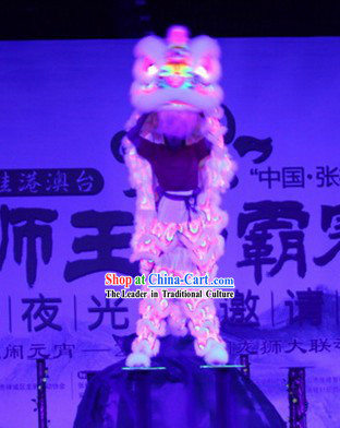 Glow in Dark LUMINOUS Lion Dance Costumes Complete Set