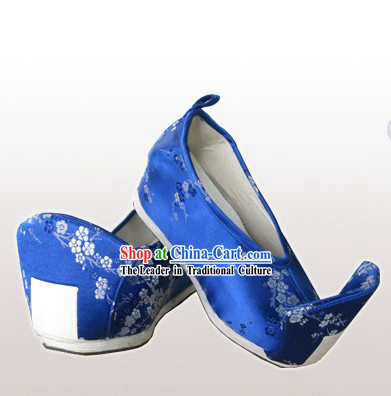 Traditional Chinese Guzhuang Shoes