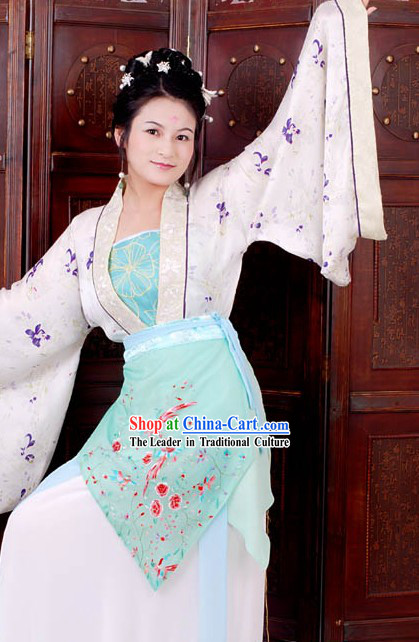 Chinese Classical Solo Dance Embroidered Birds Costume