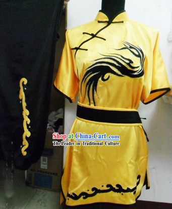 Dragon Tail Martial Arts Performance Silk Suit