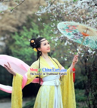 Ancient Chinese Xi Shi Beauty Costumes for Women