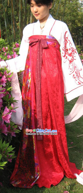 Ancient Chinese Tang Dynasty Palace Lady Costumes