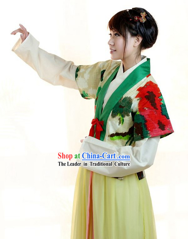 Traditional Chinese Banbi Hanfu Clothing for Women
