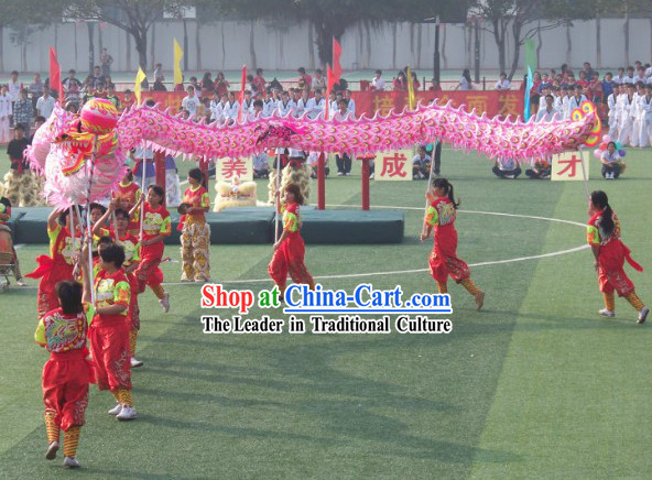 Professional Competition and Parade Luminous Dragon Dancing Costume Complete Set
