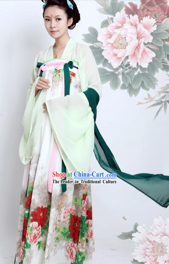 Ancient Chinese Tang Dynasty Beauty Clothing for Women