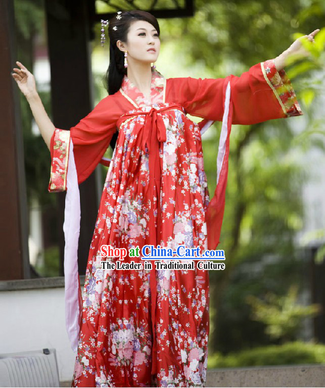 Ancient Chinese Tang Dynasty Lady Costume for Women