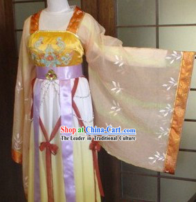 Ancient Chinese Tang Dynasty Style Lady Clothing
