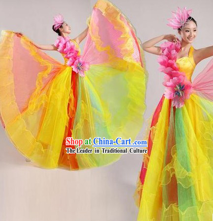 Traditional Chinese Stage Performance Dancing Costume and Headpiece for Women