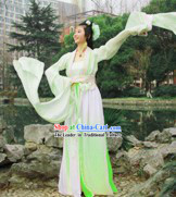 Ancient Chinese Water Sleeve Hanfu Guzhuang Clothing