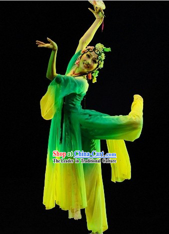 Ancient Chinese Classical Dance Suit Complete Set for Women