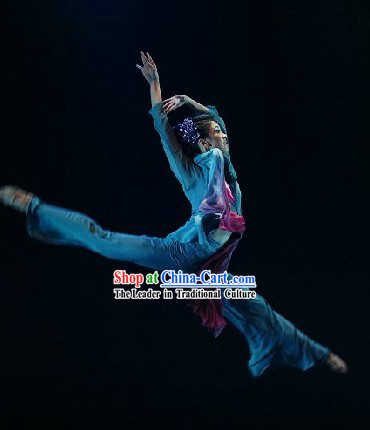 Chinese Tao Li Bei Dance Competition Costume for Women