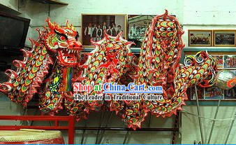 Top Luminous Dragon Dance Costume for 9-10 People