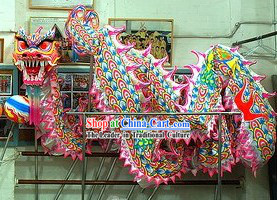 Professional Luminous Dragon Dance Costume for 9-10 Adults