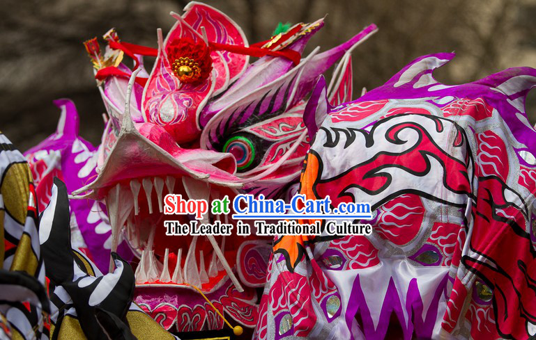 Supreme Female Dragon Dance Costume for Men