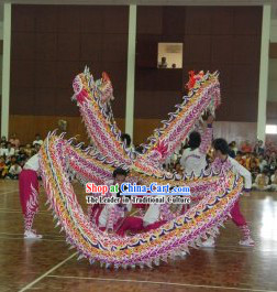 High School Luminous Dragon Dance Costume Complete Set for Students