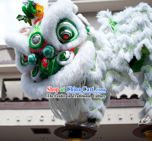 Friendly Lovely Southern Hoksan Lion Dancing Head and Costume Complete Set