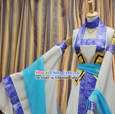 Ancient Chinese Blue and White Fairy Lady Costumes