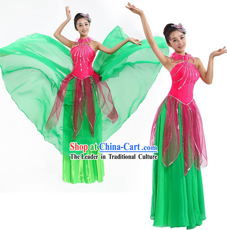 Chinese Classic Lotus Dance Costumes and Headpiece for Women