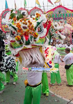 Cultural Chinese Lion Dance Costume Supplies