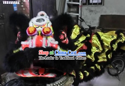 International Lion Dance Championships Costumes Full Set