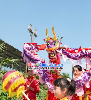 6 Meters Purple Beijing Dragon Dance Costume for Five or Six Kindergarden Children