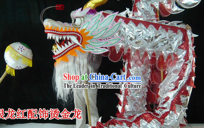 Standard Competition and Parade Silver Dragon Dance Costume for 9-10 Dancers
