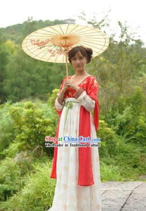 Traditional Chinese Tang Dynasty Clothes Outfit Skirt for Girls