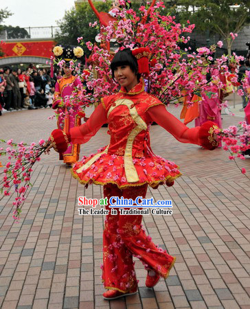 Chinese New Year Flower Dance Costumes for Women