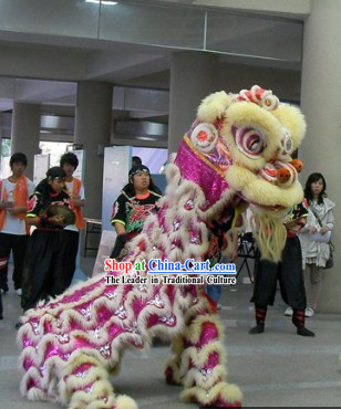 Tiger Stripes Festival Ceremony Top Lion Dance Costumes Complete Set