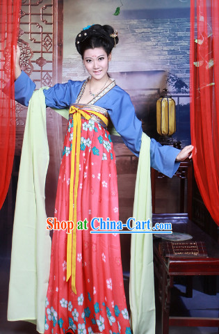 Chinese Tang Dynasty Traditional Skirt for Women