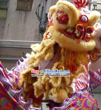 Most Welcome Congratulations Chinese Hok San Lion Dance Costumes Complete Set