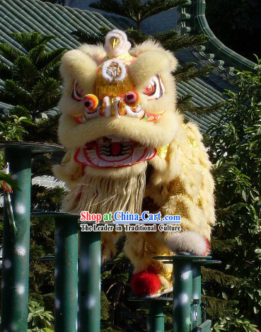 Most Popular Chinese Huang Feihong Master Lion Dance Costumes Full Set