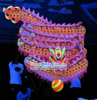 Professional Luminous Dragon Dance Music and Costume Complete Set