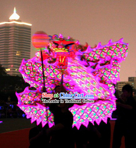 Top Pink Luminous Dragon Dance Costumes Full Set
