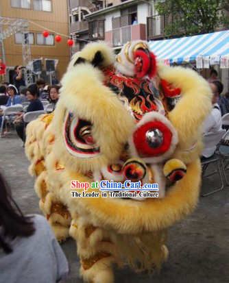Best Handmade Lion Dance Costume Complete Set