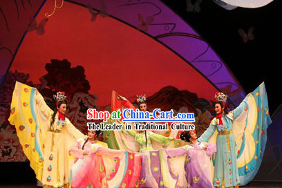 Traditional Chinese Opera Butterfly Love Liang Zhu Butterfly Costumes