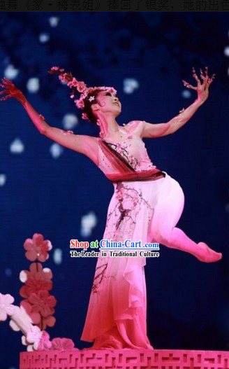 Traditional Chinese Pink Plum Blossom Classical Dancing Costume Complete Set