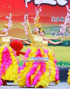 Novelty Dance Costumes and Headdress Complete Set