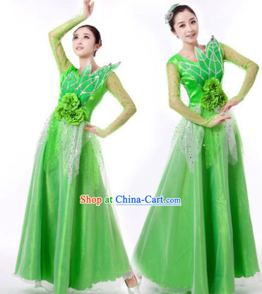 Traditional Chinese Green Leaf Dancing Clothes and Hair Accessories