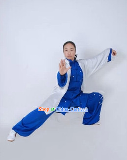 Top Blue and White Martial Arts Tai Chi Silk Clothes