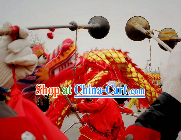 Chinese Dragon Dancing Costume