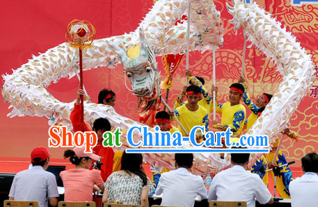 Silver Net Dragon Dance Costume Complete Set