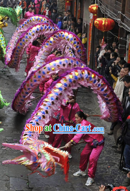 Chinese New Year Shinning Dragon Costume for Adults