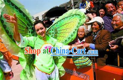 Chinese New Year Parade Btterfly Costume