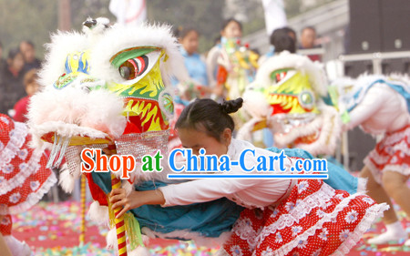 lion dancing dragon dancing equipments and costumes