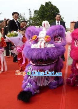 Top Purple Southern Lion Dance Equipment Complete Set