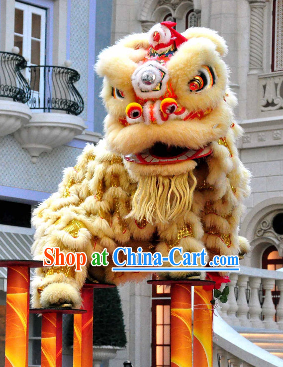 Asian Chinese Lion Costume Complete Set